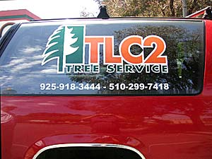 TCL2 Decal